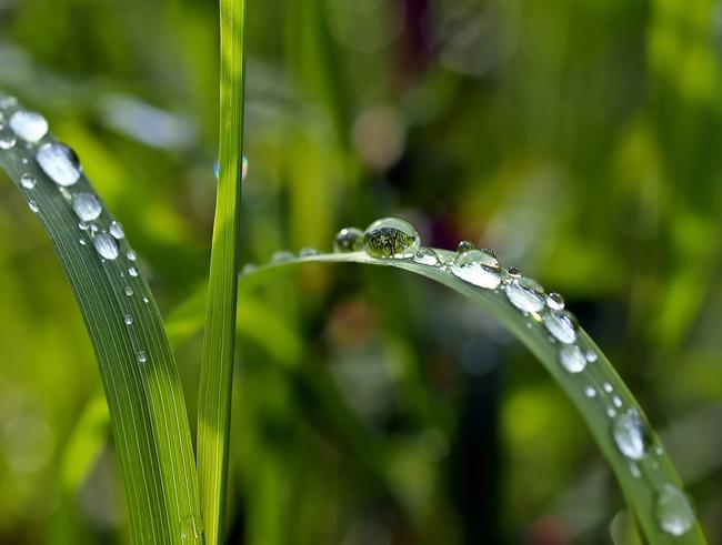Este año, más que nunca, celebra con la Escuela del Agua el «Día Mundial del Agua»